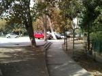 Antes parque... ahora, estacionamiento municipal